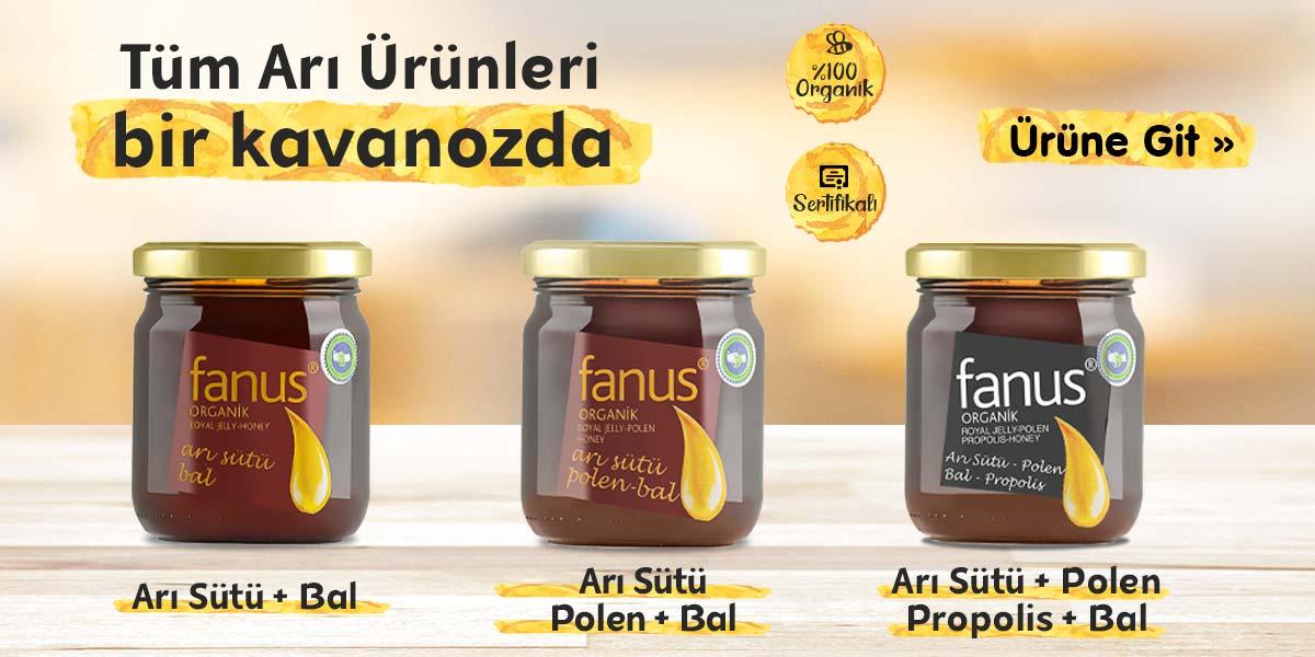 Arı Ürünler